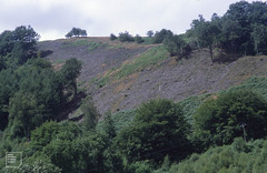 Garth East end conifers felled in late 1990s, 22/07/99 (Mary Gillham Archive Project) Tags: industry landscape st1184 wales 14433 1999 22071999 gwaelodygarth