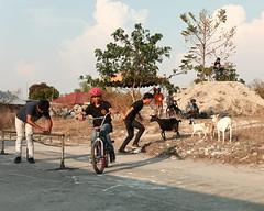 IMG_3259 (RV Henretty-Jornales) Tags: philippines bmx mtb jam dd6 pilipinas angelescity pampanga filipino pinoy goats asia southeastasia