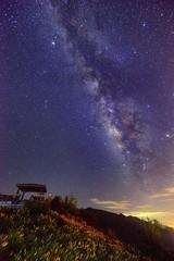 ~~ Milkyway above Orange Daylily (Shang-fu Dai) Tags:  taiwan   nikon d800 afs1635mmf4 landscape formosa           nightscene night galaxy   milkyway
