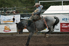 Tak_CPRA_2016-5197 (takahashi.blair) Tags: coachtak rodeo blairtakahashitakahashiblaircoachtakblairtakahashi pincher creek barrel racing bronc rope bareback steer bullriding
