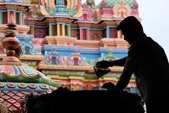 Ranganathaswamy Temple, Trichy (Fabionik) Tags: 2016 india religion tamilnadu trichy