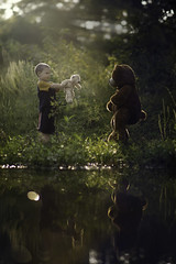 The Encounter (Phillip Haumesser Photography) Tags: boy child kid creature bear water reflection teddybear philliphaumesser