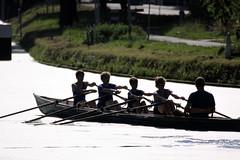 IMG_3170 (Hans Heijnen) Tags: dds regatta