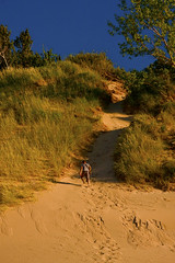 Dune Trekker Nearing the Summit of the Sand Mountain Warren Dunes State Park Michigan 7402 (www.cemillerphotography.com) Tags: sand hills westernmichigan harborcountry sawyer marramgrass forest lakemichigan greatlakes wind waves water interdunal wetlands swamps pools ponds plants shoreline freshwater beach foredune linear parabolic transverse landscape sculpted bluff perched blowout backdune erosion bluestem cottonwood lagzone glacial moraine deposit