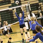 LHS Volleyball, Varsity, v RBHS, 9-13-2016