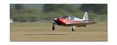 8B4I0807 (philippematon) Tags: fondfil panning fil roanne hlice bellross floue