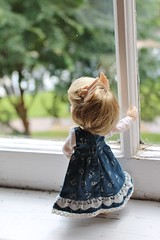 245/365 Exploring (AluminumDryad) Tags: fairyland realfee haru tinybjd bjd balljointeddoll doll resin window windowsill