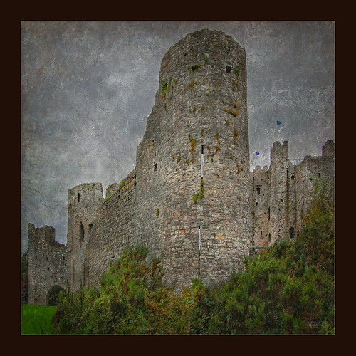 The Old Castle at Trim .....................