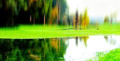 Am Polder I (misstilli) Tags: autumn canon germany deutschland eos wasser herbst natur gimp polder spiegelung badenwürttemberg verfremdung unschärfe 600d altlusheim überschwemmungsgebiet