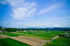 20110923-DSC_9093 (Window Leong) Tags: sigma1224mmf4556 s1224 nikond3100 snapshotphoto相片 隨攝攝影 台灣twain 旅遊travel旅行