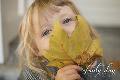 (Cloudy Day Photography) Tags: portrait canon5d beautifulbokeh rokinon35mmf14