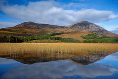 Loch Cill Chriosd (lil' bo) Tags: autumn mountains water reflections reeds scotland nikon isleofsky autumnglow lochcillchriosd elgoloct2012