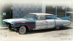 Cadillac 62 Flat Top Sedan 1959 (Sallertaine - France) 2006 ('Yannewvision' / #DontFollowThenUnfollow) Tags: old usa france car sedan french frankreich automobile cadillac retro collection american flattop oldcars francia limousine 1959 フランス brougham automobil 集合 rétro alten américaine 自動車 リムジン cadillac62 キャデラック sallertaine viellesvoitures 古い車 yannewvision レトロな車