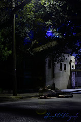 When The City Sleeps (Troyceratops) Tags: street windows girl night dead nikon boots spirit bricks levitation spiritual d5100 jaxxyd