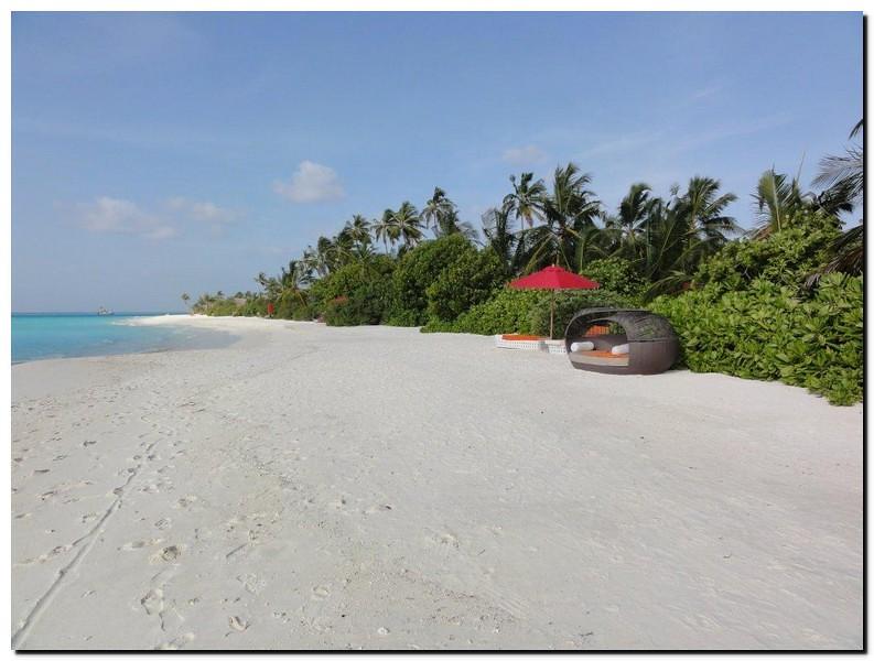 Niyama  - Atollo di Dhaalu