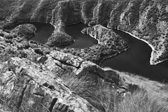 Radiša Živković  - Stubborn river (Radisa Zivkovic) Tags: wild blackandwhite mountains river landscape nikon scenery rocks europe curves serbia canyon srbija meanders ursule molitva uvac kanjonuvca meandriuvca