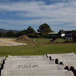 Petone Memorial Artificial - Week 1 7