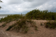 Palanga_Town 1.21, Lithuania (Knut-Arve Simonsen) Tags: beach amber seaside day cloudy dune balticsea baltic lithuania lietuva palanga litauen amberroad resorttown lietuvosrespublika polangen   poga