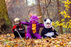 Cody, Ryan & Liam (tanya_little) Tags: statepark park family autumn trees boy portrait people baby cute fall love halloween nature leaves childhood canon river fun outside outdoors person photography 50mm togetherness ginger washington costume kid furry october hug toddler panda king photographer child play dragon purple fuzzy brothers blueeyes helmet young adorable dressup naturallight prince redhead together sword knight cape imagination shield closeness f18 redhair animalplanet royalty connection ellensburg 2012 fallenleaves spyro 5yearold kindergartener 15monthold t2i tanyalittle threegingerboys
