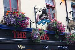 IMG_5579 (luismc2007) Tags: ireland dublin castle cork connemara irlanda