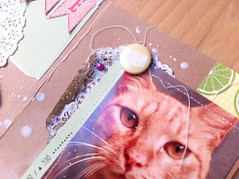 cute cat card (Elena Daz) Tags: cat scrapbook scrapbooking sewing kitty card doily kraft cardmaking