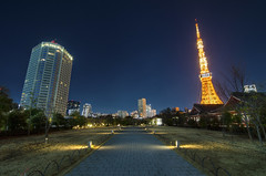 Path to the Tokyo Tower (lestaylorphoto) Tags: park camera new city cold tower japan night buildings landscape temple photography tokyo evening high nikon skyscrapers dynamic path year january newyear tokina   gaijin range  hdr tutorial  zojoji manfrotto      2013   1116mm d7000