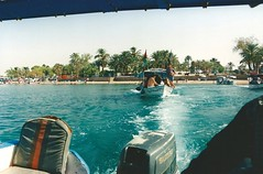 Snorkel in the Red Sea, Aqaba, Jordan (txetxi62) Tags: redsea jordan aqaba jordania