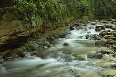 Green River ! (Sivispacem...) Tags: sd1 merrill 1835 art 18 long exposure river riviere nature longue exposition water eau green vert neuchatel switzerland suisse gor du vauseyon greatphotographers