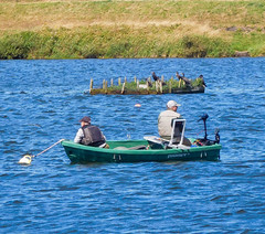 just chilling floating around n fishing (watergypsyrach) Tags: thryberghcountrypark rotherham southyorkshire england uk lake rowingboats cormorant nature fisherman fishing nikoncoolpixs7000