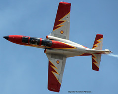 """Spain-Air Force. Special Livery """"Tiger Meet"""". (Jacques PANAS) Tags: spainair force casa c101eb aviojet 7928 msneb012828"""