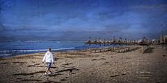 (252/16) Paseando a Chester (Pablo Arias) Tags: pabloarias espaa spain hdr photomatix nx2 photoshop nubes texturas cielo playa peroo arena agua mar elarenal palmademallorca islasbaleares