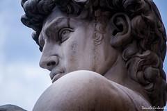 David - Piazza della Signoria, Firenze (carbonelli93) Tags: toscana firenze florence il david michelangelo faccia piazza della signoria