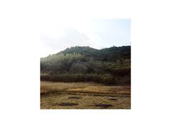 JP-08 (sm0r0ms) Tags: yashica mat124 film analog kodak fujifilm portra 6x6 mediumformat landscape architecture color photography roadtrip japan earthquake archive romainsaccoccio setoinlandsea kyoto teshima naoshima 2011