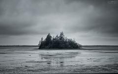 Remote (sethalanphoto) Tags: island weather marsh season cold desolate remote isolated nature trees coast pnw