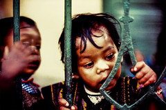 S28 webyoung girl fence_0458 (kcadpchair) Tags: motherteresa missionariesofcharity calcutta kolkata lepers hansen people portrait urban poverty child youngboy younggirl volunteers kalighat