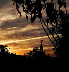 Atardecer en Sevilla (_Cercadelsuelo) Tags: sevilla seville atardecer puesta de sol nubes cielo precioso contraste giralda giraldillo