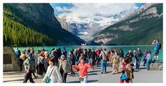 Canada - Banff National park (Gran Hglund (Kartlsarn)) Tags: canada banff banffnationalpark lakelouise lake louise nationalpark 2016 granhglund kartlsarn kartlasarn d800 nikon rosabussarna rosa bussarna pinkcaravan greentortoise