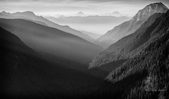 Woven light (D. Inscho) Tags: northcascades northwest pacificnorthwest washington mountains valley