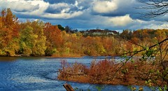 Pennsylvania Autumn (MissyPenny) Tags: autumn fall water pennsylvania foliage buckscounty delawareriver pennsylvaniatravel commonwealthpa wschallengeone pdlaich missypenny