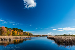 Mer Bleue Bog (I saw_that) Tags: blue sky cloud colour fall nature day swamp marsh uncool bog bleue beautify uncool2 uncool8 uncool3 uncool4 uncool5 uncool6 uncool7 uncool9