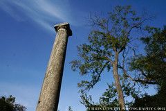 A 2000 year old pillar in North America. (Chris Lupetti: www.chrislupetti.com) Tags: photo yonkers lupetti chrislupetti untermeyergardens