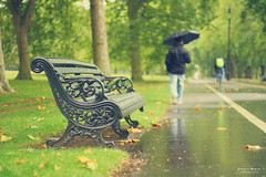 Rainy day (Yavanna Warman {off}) Tags: park parque autumn man tree verde green london fall nature grass leaves rain umbrella canon garden bench way walking hojas eos lluvia árboles dof camino bokeh path paseo rainy londres otoño hydepark chico hombre jardín hierba lluvioso 50mmf18 paragüas milde 1000d