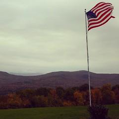ใบไม้เหลืองและเริ่มร่วงแล้ว ฤดูหนาวกำลังเดินเข้ามาทักทายเราแล้ว #PomUS