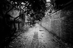 """Failure is simply the opportunity to begin again, this time more intelligently."" - Henry Ford (Matthew Post) Tags: bali film wall analog canon indonesia eos vanishingpoint alley post matthew cobblestone alleyway lane paving hp5 laneway ilford eos5 roadway balinese tanjungbenoa hp5ilford matthewpost"