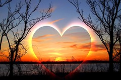 A MOMENT TO EMBRACE (Barbacci) Tags: trees sunset love silhouette scenery heart romance scenics nightfall outdoorevening