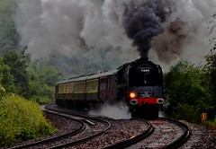 Steam and Rain (KPAR UK Photography) Tags: uk trees rain rural train canon landscape countryside colours action rail railway loco gloucestershire steam locomotive railtour 500d dukeofgloucester 71000 uksteam cathedralsexpress framptonmansell