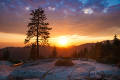 Beetle Rock Sunset #3 (Circle Flare), Sequoia National Park (flatworldsedge) Tags: california park sunset cloud rock pine backlight circle day glow cloudy beetle halo ring national underside flare granite cracks sequoia blast circular blackbear slopes explored a width800 5dmkii yahoo:yourpictures=yourbestphotoof2012 hrefhttpwwwflickrcomphotosflatworldsedge7905148058 titleunnaturalhightransamericapyramidlighttrailssanfranciscobyflatworldsedgeonflickrimg srchttpfarm9staticflickrcom8453790514805808330ff82dcjpg height534 altunnaturalhightransamericapyramidlighttrailssanfranciscoa