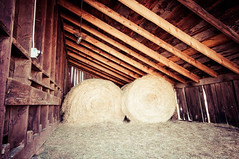 Hay bales (J. Paxon Reyes) Tags: gardens garden corn colorado unitedstates denver co maze botanic chatfield maize littleton
