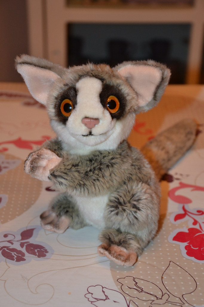 Maurice The Lemur