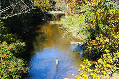 Pennypack Creek: Autumn (JKEL) Tags: autumn fall philadelphia creek fishing pennypack northeastphiladelphia pennypackpark pennypackcreek